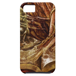 This Book Is Haunted iPhone 5 Cases