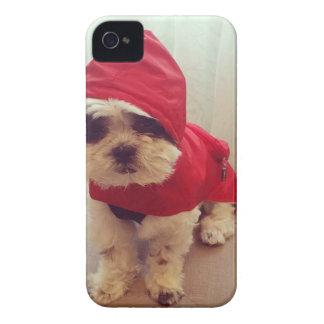 This dog hates rain Case-Mate iPhone 4 cases