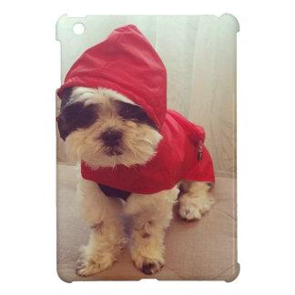 This dog hates rain cover for the iPad mini