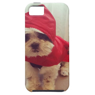This dog hates rain iPhone 5 cases