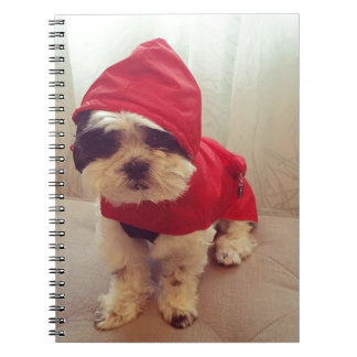 This dog hates rain notebook