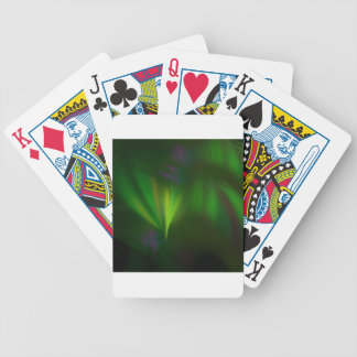 This fractal looks like aurora bicycle playing cards