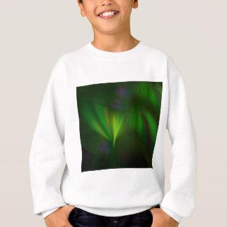 This fractal looks like aurora sweatshirt