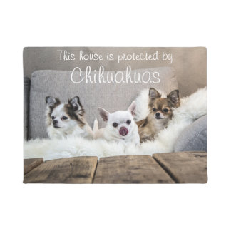 This House Is Protected By Chihuahuas Doormat
