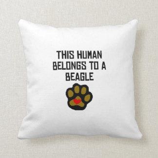 This Human Belongs To A Beagle Pillows