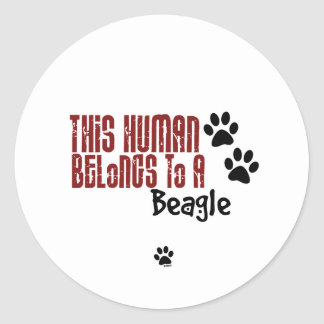 This Human Belongs to a Beagle Round Sticker