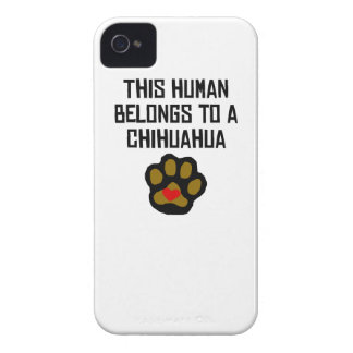 This Human Belongs To A Chihuahua iPhone 4 Cases
