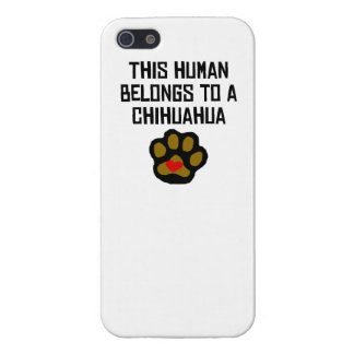 This Human Belongs To A Chihuahua iPhone 5 Cases