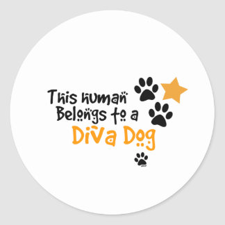This Human Belongs to a Diva Dog Round Sticker