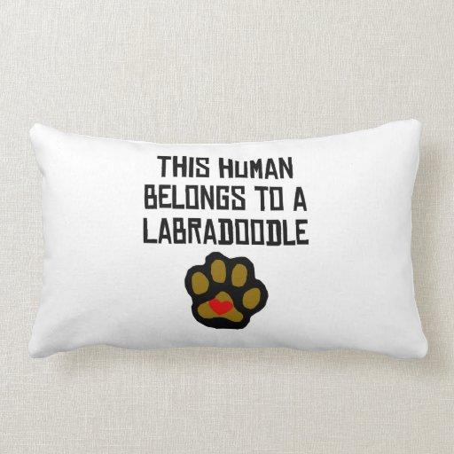 This Human Belongs To A Labradoodle Throw Pillows