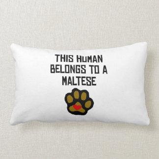 This Human Belongs To A Maltese Throw Pillows