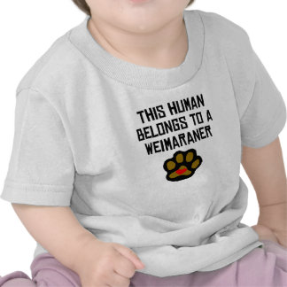 This Human Belongs To A Weimaraner T-shirts