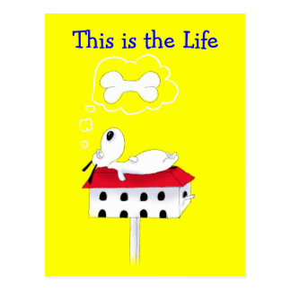 This is the Life Postcard