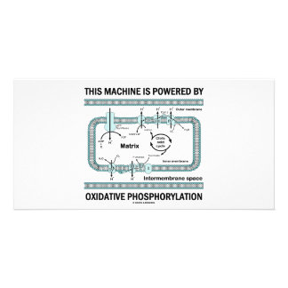This Machine Powered By Oxidative Phosphorylation Personalized Photo Card