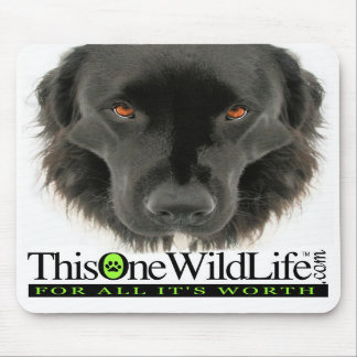 This One Wild Life Mouse Pad
