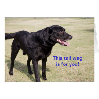 This tail wag is for you.  Black Lab Card
