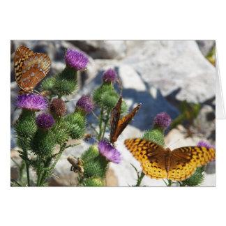 Thistle Blossoms & Fritillaries:Hawthorne Card