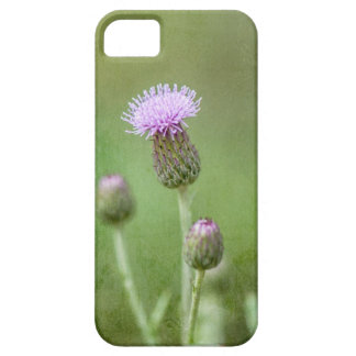 Thistle Case For The iPhone 5