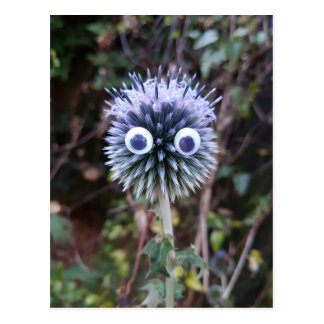 Thistle do nicely ... postcard