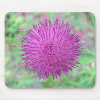 Thistle Flower Mouse Pad