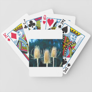 Thistle Trio Bicycle Playing Cards