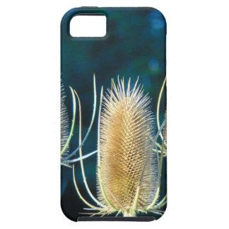 Thistle Trio iPhone 5 Cases