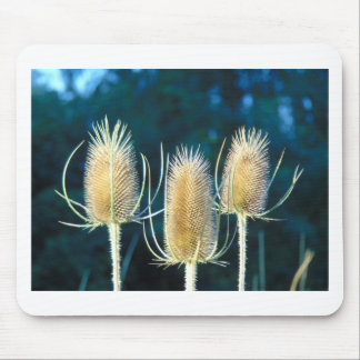 Thistle Trio Mouse Pad
