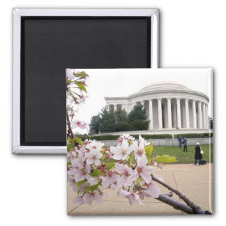 Thomas Jefferson Memorial with cherry blossoms Magnet