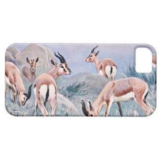 Thompson's Gazelles iPhone 5 Covers