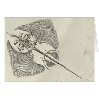 Thornback Skeleton Card