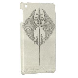 Thornback Skeleton Case For The iPad Mini