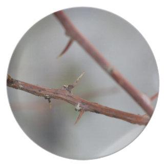 Thorns Plate