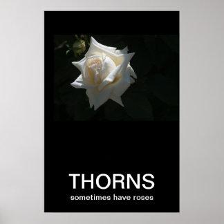 Thorns Sometimes Have Roses Demotivational Poster