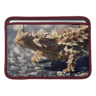 "Thorny Devil Lizard, Outback Australia, 11"" Air MacBook Sleeves"