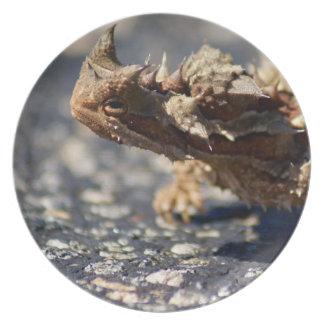 Thorny Devil Lizard, Outback Australia, Photo Dinner Plates