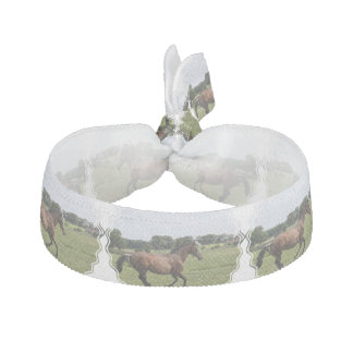 Thoroughbred Horse Hair Tie