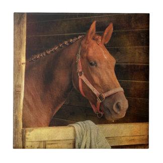 Thoroughbred Horse Tile