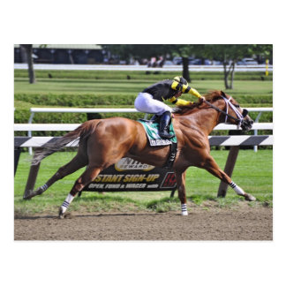 Thoroughbred Racing at Historic Saratoga Racetrack Postcard