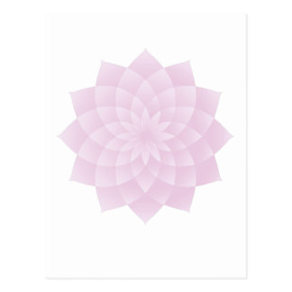Thousand Petal Lotus, Pink Postcard