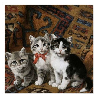 Three Adorable Kittens Poster