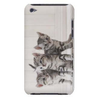 Three American Shorthair Kittens Barely There iPod Case