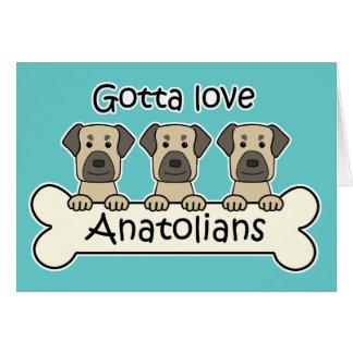 Three Anatolian Shepherds Note Card