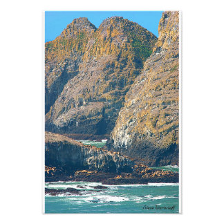 Three Arch Rocks and Sea Lions Photo Print
