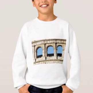 three arch wall sweatshirt