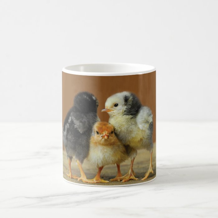 Three Baby Chicks Classic White Coffee Mug