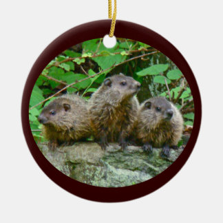 Three Baby Groundhogs Ceramic Ornament