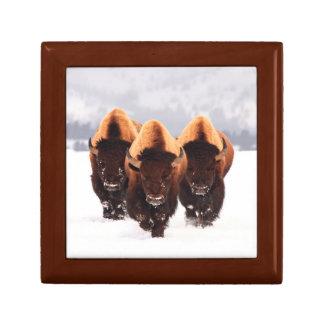 Three Bison Jewelry Keepsake Box