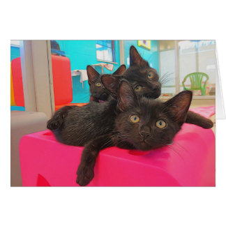 Three Black Kittens Card