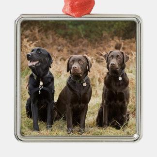 Three Black Labrador retrievers Silver-Colored Square Ornament