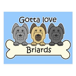 Three Briards Postcard